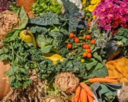Assortiment de fruits et de légumes de saison
